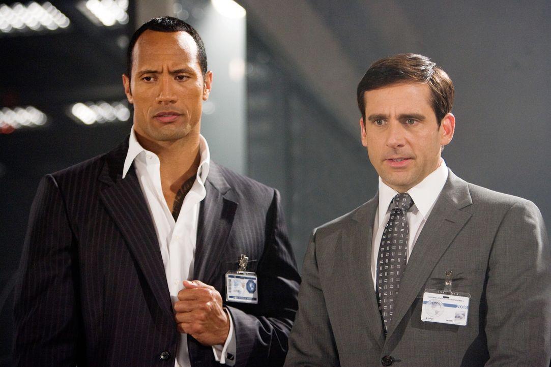 Obwohl Maxwell Smart (Steve Carell, r.), Top-Analytiker des Geheimdienstes CONTROL, seinen Job liebt, hat er nur einen Wunsch: Er will nicht sein Le... - Bildquelle: Warner Brothers