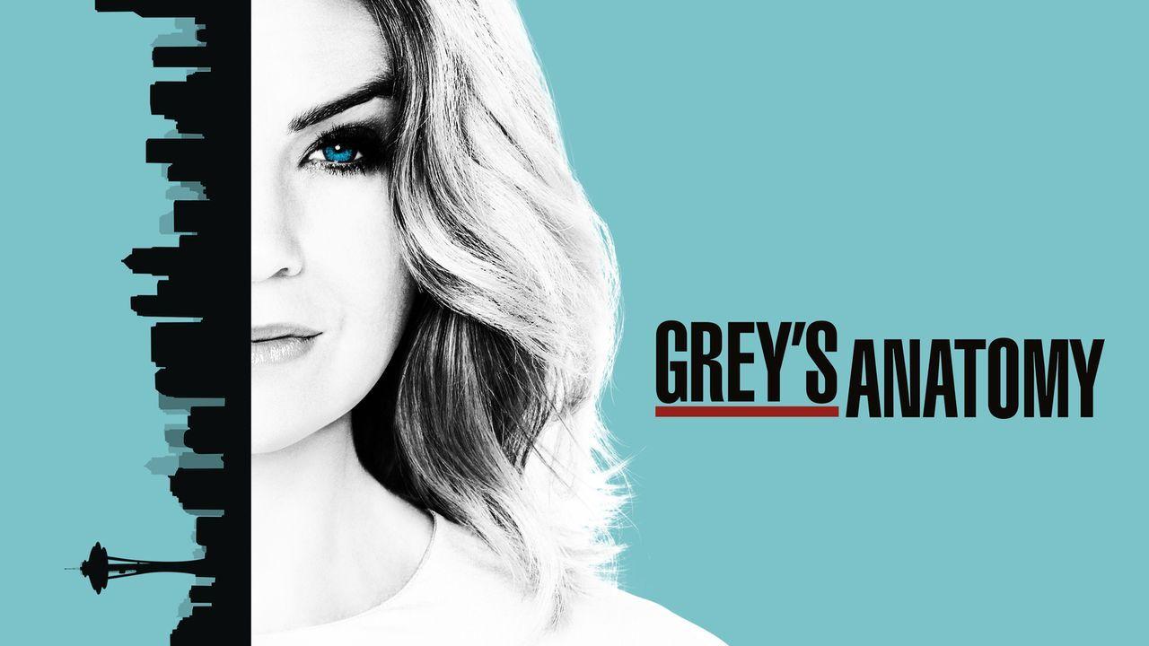 (13. Staffel) - Neues aus dem Leben von Meredith Grey (Ellen Pompeo) und dem Seattle Grace Hospital ... - Bildquelle: 2016 American Broadcasting Companies, Inc. All rights reserved.