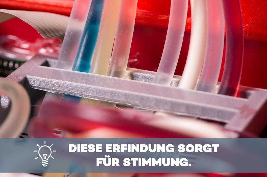 P7_DasDing_4e_BU - Bildquelle: ProSieben/Willi Weber