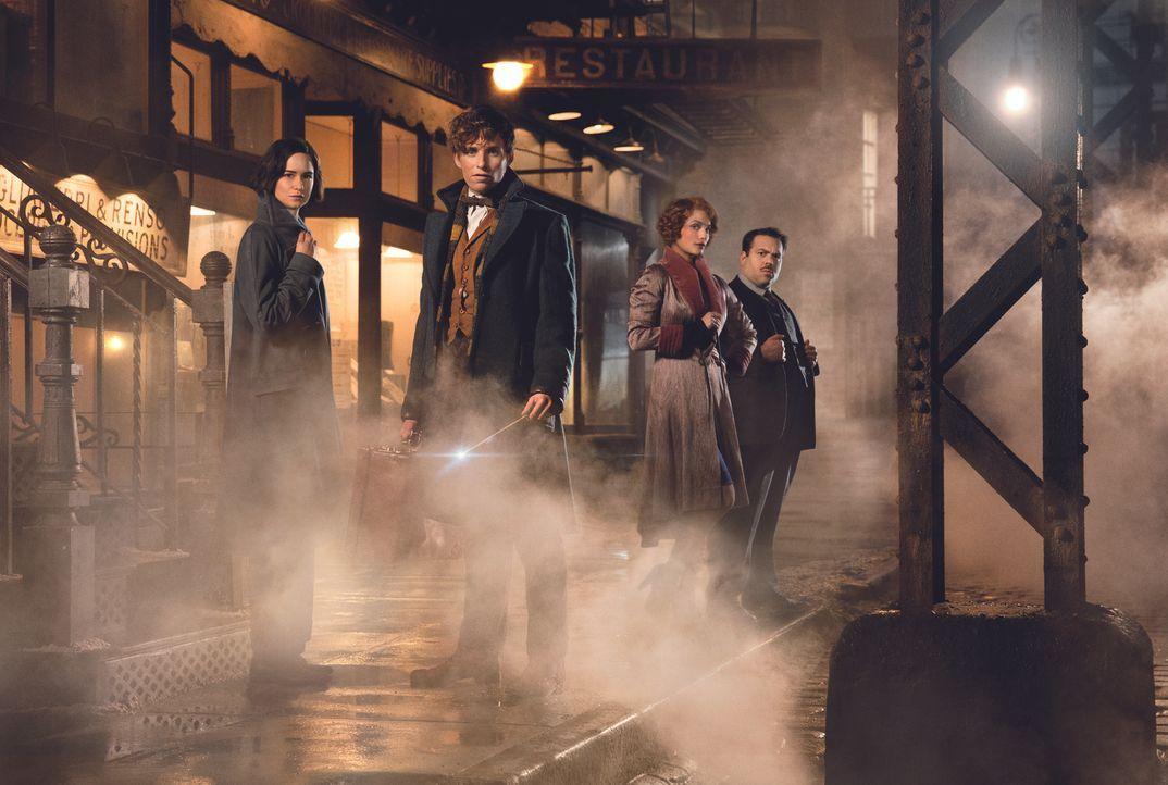 (v.l.n.r.) Tina Goldstein (Katherine Waterston); Newt Scamander (Eddie Redmayne); Queenie Goldstein (Alison Sudol); Jacob Kowalski (Dan Fogler) - Bildquelle: Warner Bros.
