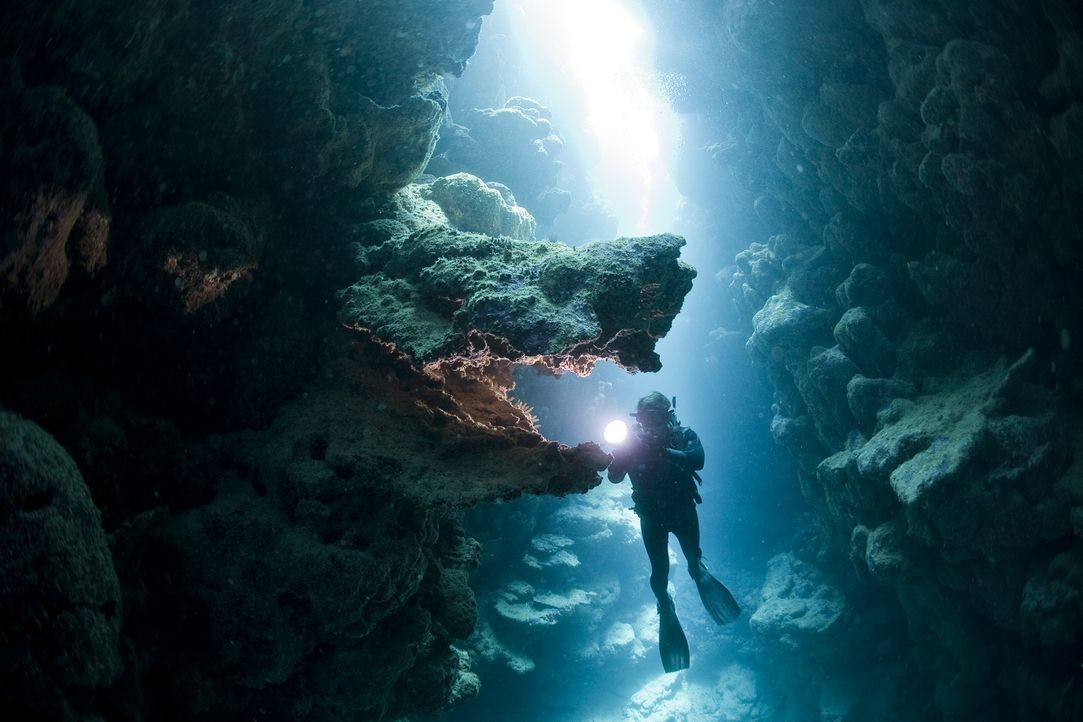 """Dank modernster Ausrüstung und Kameratechnik bietet die Dokumentation """"Unsere Ozeane"""" beeindruckende Bilder über das geheimnisvolle Innenleben der O... - Bildquelle: Pascal Kobeh Universum Film"""