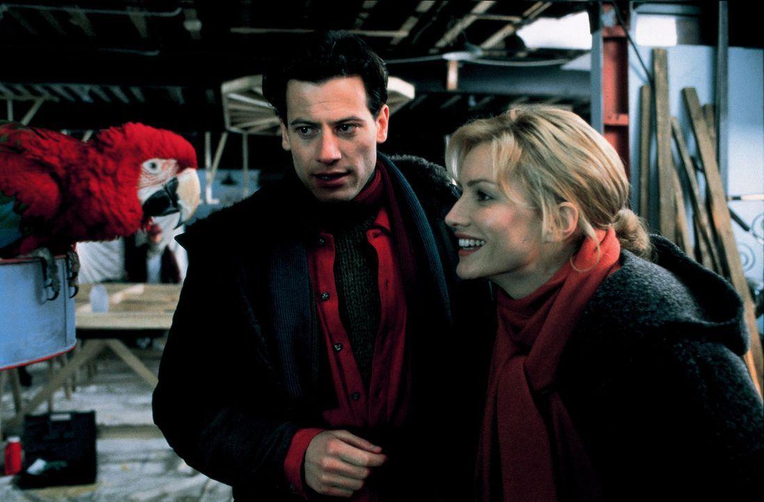 Kevin Sheperd (Ioan Gruffudd, l.) betreibt ein Hundeasyl. Hier macht Chloe Simon (Alice Evans, r.) Bekanntschaft mit einem Papagei, der glaubt er se... - Bildquelle: Walt Disney Pictures