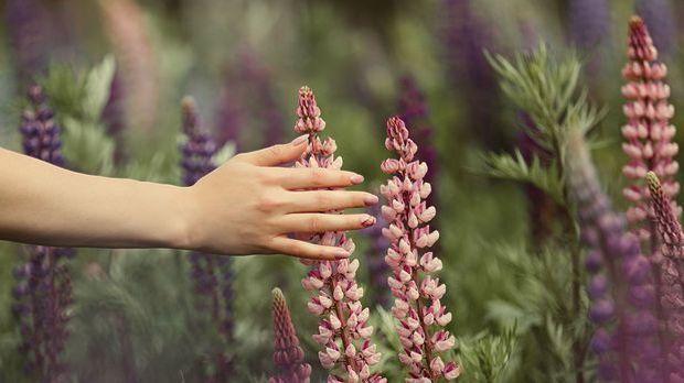 Ballerina, Squoval oder doch Mandelform – wir haben die Nagelformen für euch...