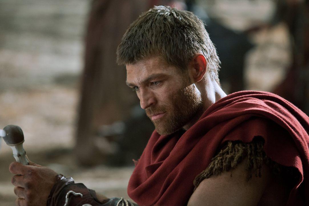 Will, dass sich jenseits der Apenninen die ehemaligen Sklaven in der Freiheit ein neues Leben aufbauen: Doch hat Spartacus (Liam McIntyre) gegen die... - Bildquelle: 2012 Starz Entertainment, LLC. All rights reserved.