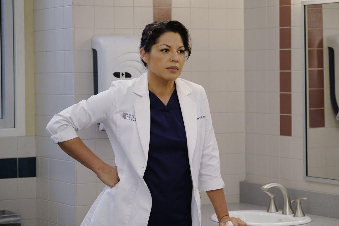 Wie wird es mit ihr und Penny weitergehen? Callie (Sara Ramirez) ... - Bildquelle: Tony Rivetti ABC Studios