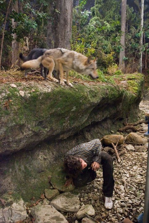 Als der Werwolffamilie deutlich wird, dass Vivian nicht bereit ist, Aiden (Hugh Dancy) aufzugeben,. wollen sie seinen Tod - um jeden Preis ... - Bildquelle: 2007 Kinowelt GmbH