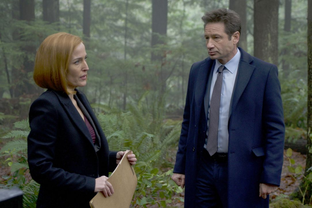 Scully (Gillian Anderson, l.) kann zunächst nicht glauben, dass an dem Tod eine Jungen wirklich Hexen schuld sein sollen, doch Mulder (David Duchovn... - Bildquelle: Shane Harvey 2018 Fox and its related entities.  All rights reserved.