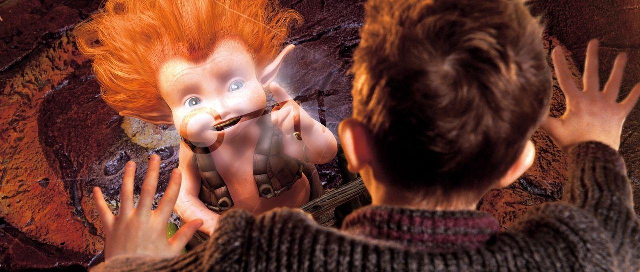 Auf der Suche nach dem Schatz seines Großvaters, gerät Arthur (Freddie Highmore) in das sagenhafte Land der Minimoys und erlebt dort sein größtes Ab... - Bildquelle: TOBIS Film