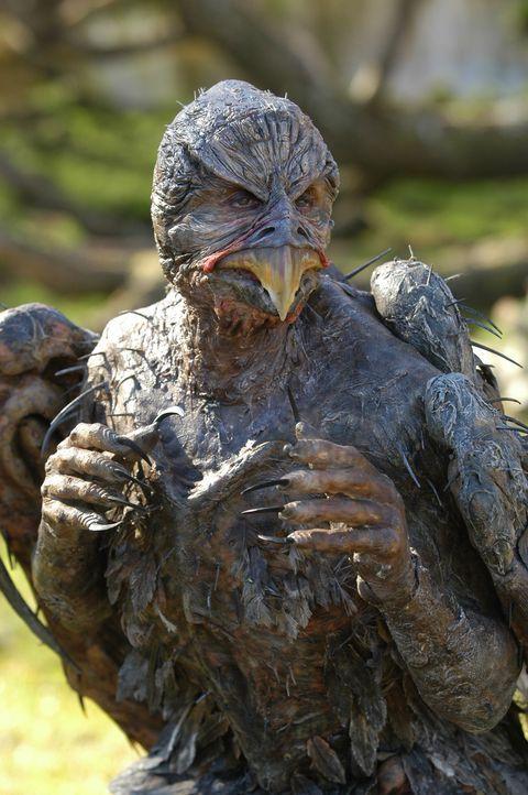 In dem Sumpf von Stymphalos leben menschenfressende Raubvögel, deren Flügel, Krallen und Schnäbel aus Bronze sind und deren Federn als Pfeile ein... - Bildquelle: Ken George Hallmark Entertainment