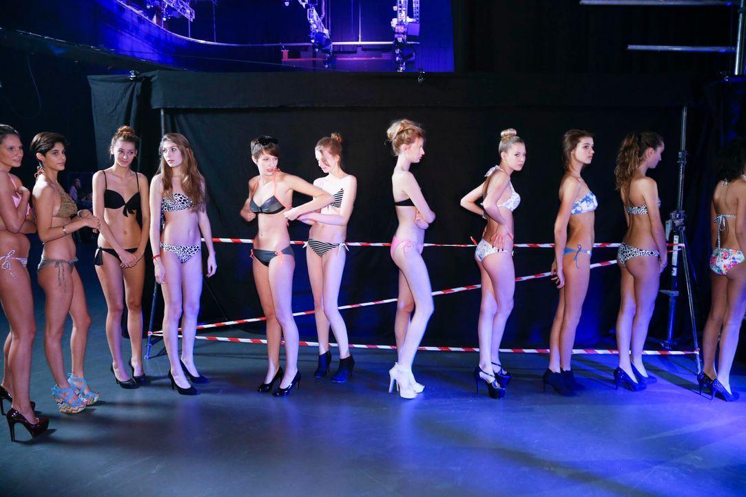 GNTM-Stf10-Epi03-Bikiniwalk-Muc-31-ProSieben-Richard-Huebner - Bildquelle: ProSieben/Richard Hübner