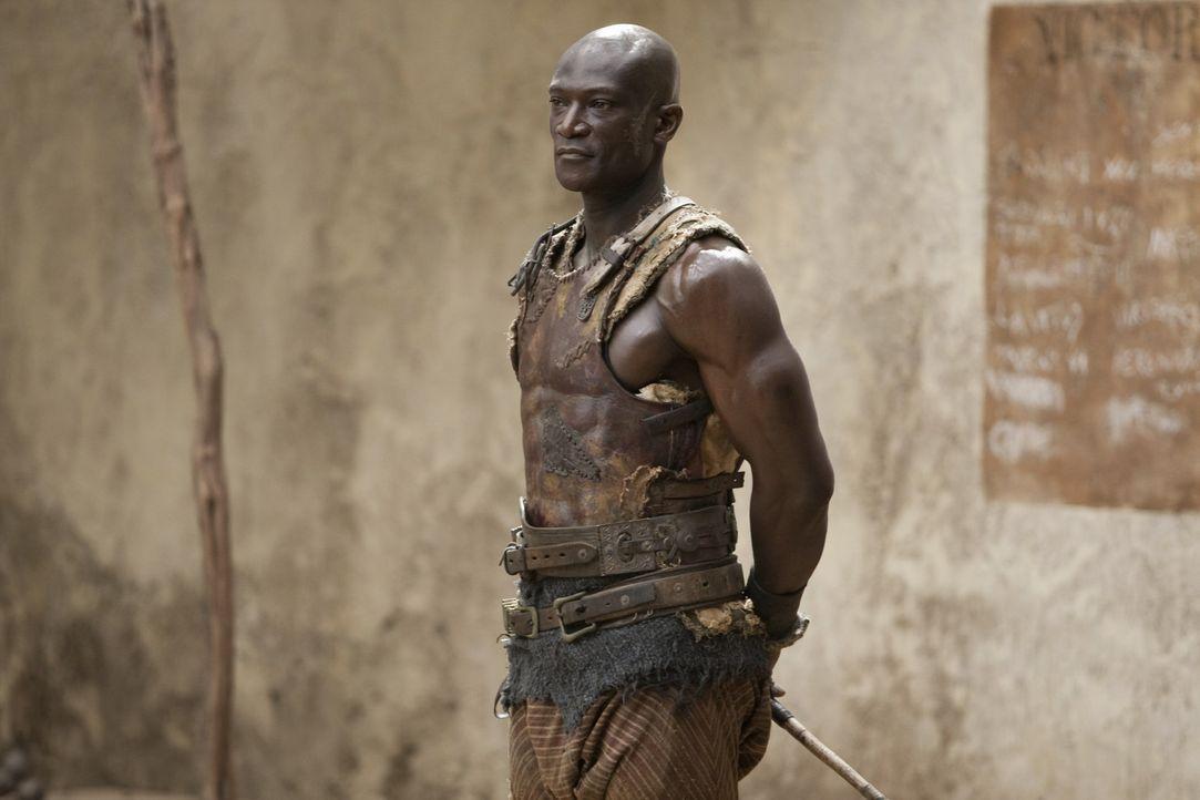 Drago (Peter Mensah) ist selber Sklave, aber auch Trainer der Gladiatoren in Batiatus' Gladiatorenschule. Er führt ein strenges Regiment ... - Bildquelle: 2010 Starz Entertainment, LLC