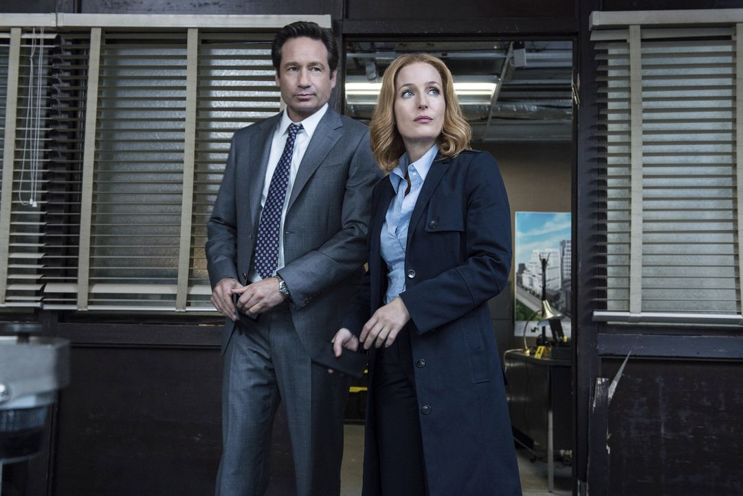 Ein neuer mysteriöser Fall wartet auf Mulder (David Duchovny, l.) und Scully (Gillian Anderson, r.) ... - Bildquelle: Ed Araquel 2016 Fox and its related entities.  All rights reserved.