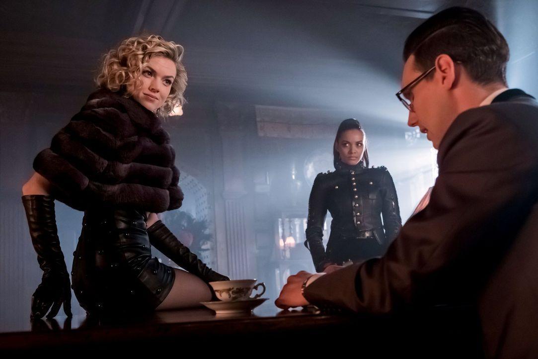 Während Barbara (Erin Richards, l.) und Tabitha (Jessica Lucas, M.) ihre geheimen Pläne weiter verfolgen, sucht Edward Nygma (Cory Michael Smith, r.... - Bildquelle: Warner Brothers