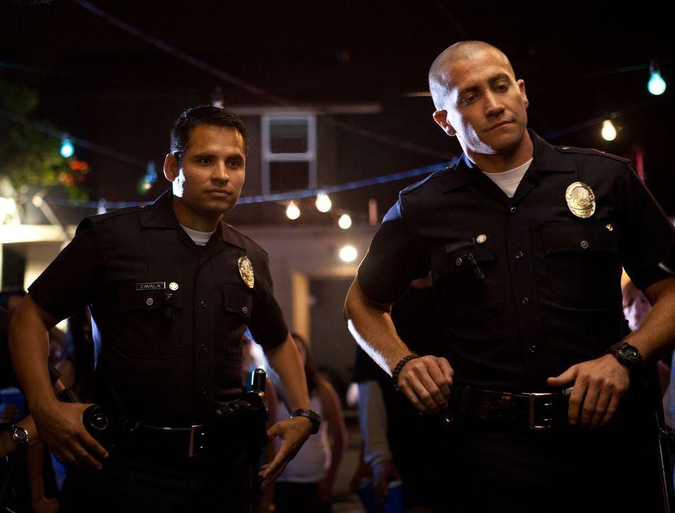 Officer Brian Taylor (Jake Gyllenhaal, r.) und Officer Mike Zavala (Michael Pena, l.) sind unbestechlich, engagiert und todesmutig. Da geraten sie i... - Bildquelle: Scott Garfield 2011 Sole Productions, LLC. All rights reserved.