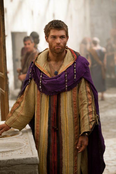 Um seinen Gefolgsleuten Nahrung und Unterkunft zu besorgen, beschließt Spartacus (Liam McIntyre), eine ganze Stadt einzunehmen. Mit einem Trick geli... - Bildquelle: 2012 Starz Entertainment, LLC.  All Rights Reserved