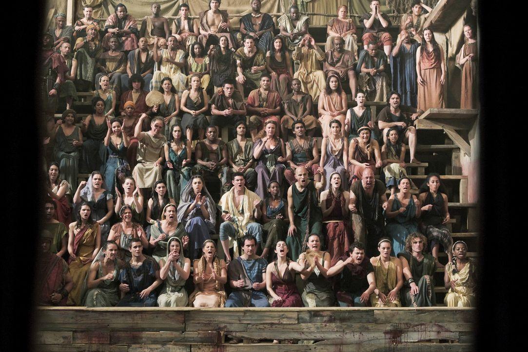 Das Volk liebt die Kämpfe der Gladiatoren ... - Bildquelle: 2010 Starz Entertainment, LLC