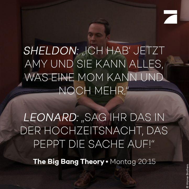 Staffel 11 Episode 23 - Sheldon und Leonard - Bildquelle: Warner Bros. Television