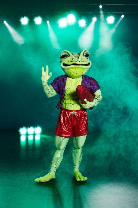 Der Frosch - Bildquelle: ProSieben / Marc Rehbeck
