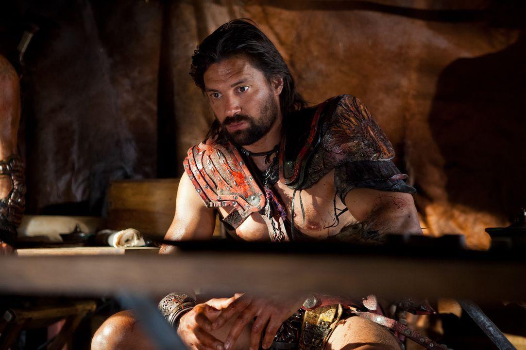 Noch ahnt Crixus (Manu Bennett) nicht, dass der neue Imperator, Marcus Crassus, ein hervorragender Stratege ist, der jeden Schritt seiner Feinde vor... - Bildquelle: 2013 Starz Entertainment, LLC.  All Rights Reserved