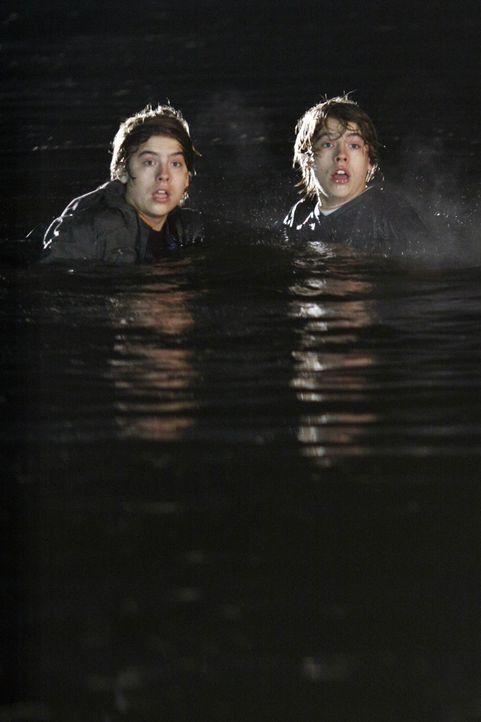 Auf der Flucht vor fremd gesteuerten Zwillingen: Cody (Cole Sprouse, r.) und Zack (Dylan Sprouse, l.) ... - Bildquelle: 2010 Disney Enterprises, Inc. All rights reserved.