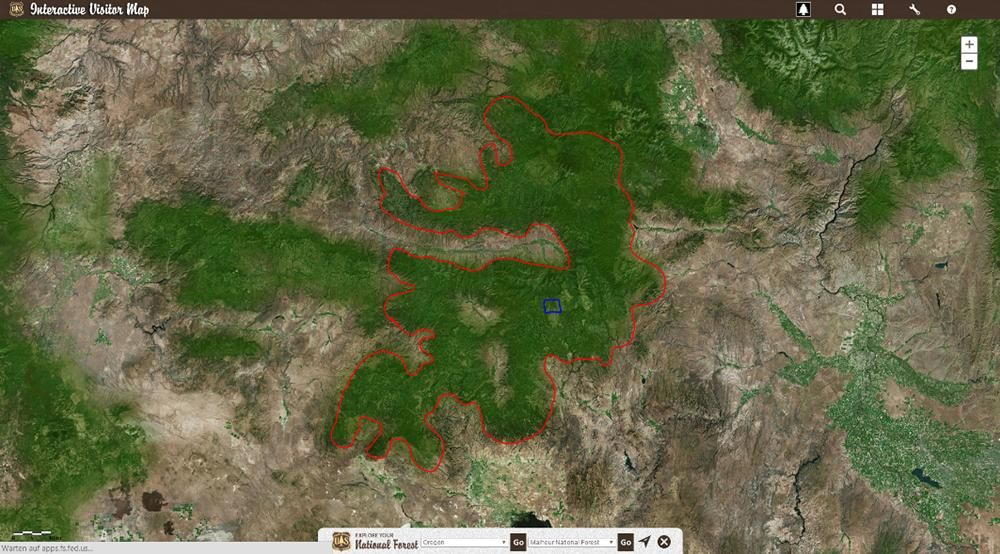 Pilze - Bildquelle: Google Maps