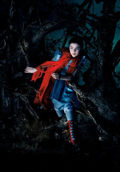 Into-The-Woods-1-c-Disney-Media- Distribution - Bildquelle: 2014 Disney Enterprises