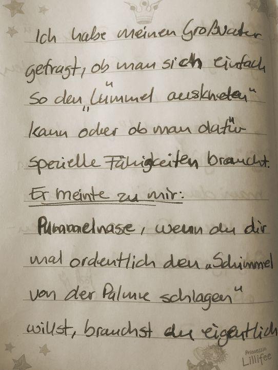 image3 - Bildquelle: ProSieben