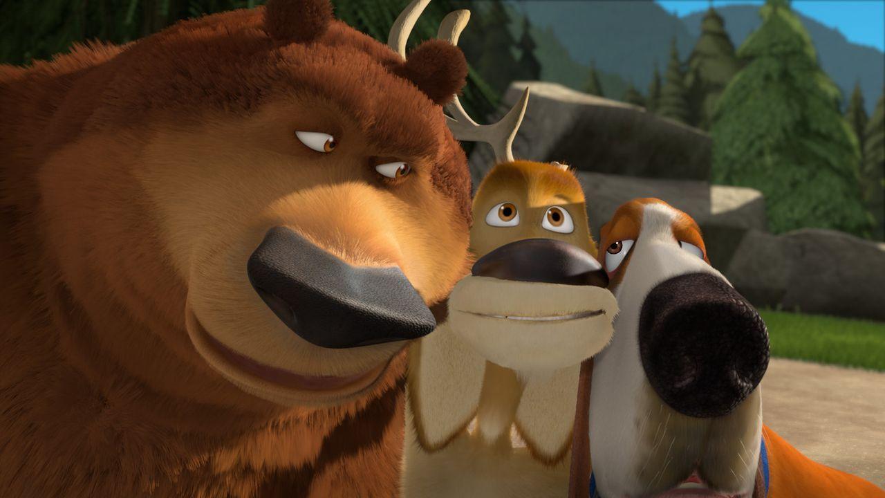 Ehe sie sich versehen landen Boog (l.) und Elliot (M.) mitten in der Welt der Haustiere, wo sie auch den Beagle Roberto (r.) kennenlernen. - Bildquelle: 2008 Sony Pictures Animation Inc. All Rights Reserved.