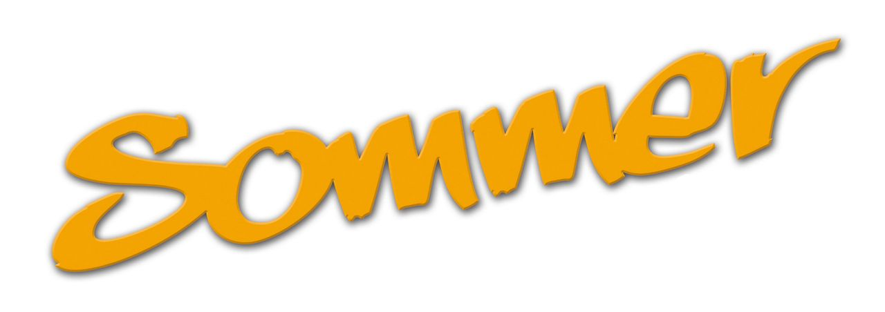 SOMMER - Logo - Bildquelle: Walt Disney Studios Motion Pictures