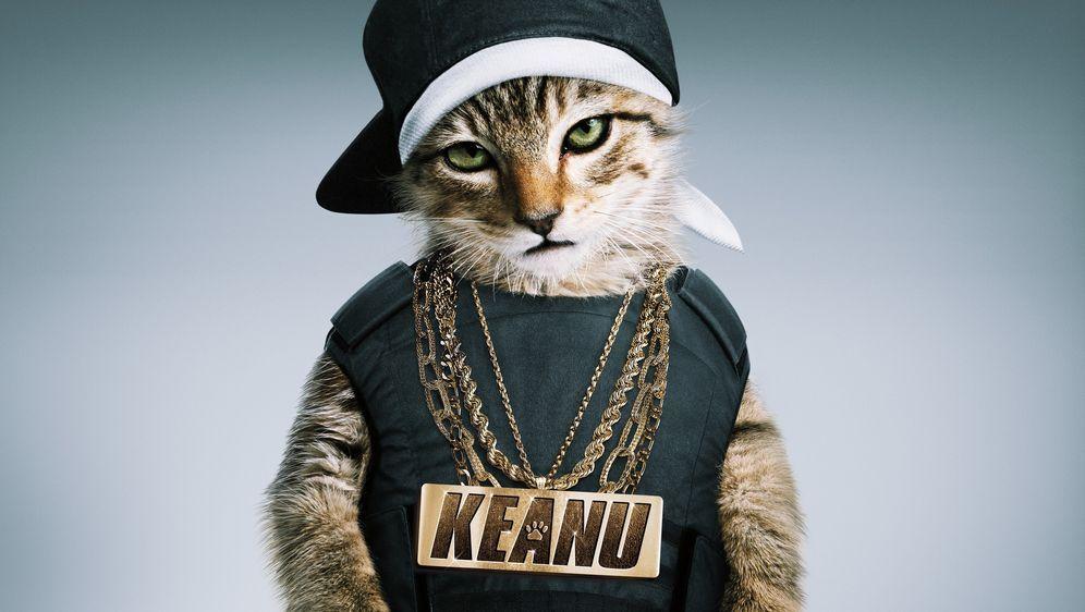 Keanu - Her mit dem Kätzchen - Bildquelle: Warner Bros. Entertainment Inc.
