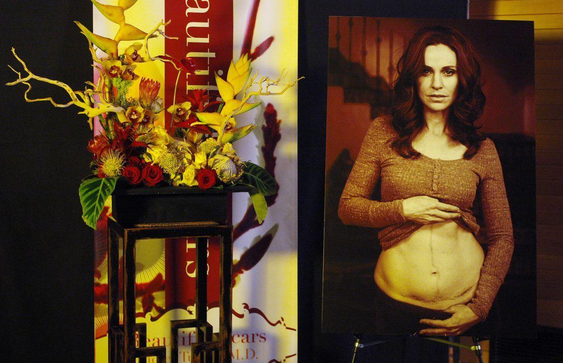 Auf der Veröffentlichungsparty von Violets (Amy Brenneman) Buch ist Sheldon ganz angetan von der schönen Marla, obwohl sie die Kritikerin ist, die... - Bildquelle: ABC Studios