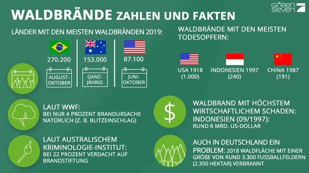 Waldbrände-in-Zahlen_grün