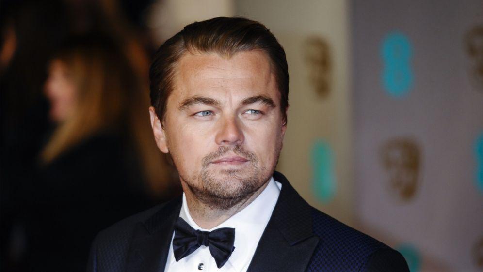 Oscars 2016 Jury Mitglied Vernichtet Leonardo Dicaprio