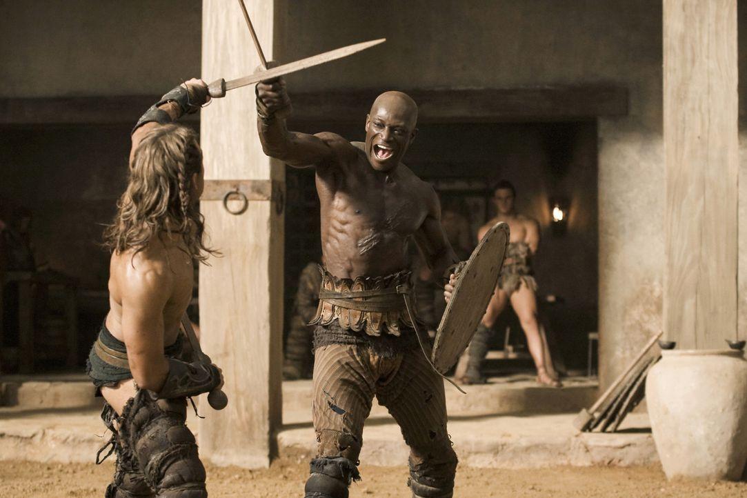 Training der Gladiatoren: Gannicus (Dustin Clare, l.) und Drago (Peter Mensah, r.) ... - Bildquelle: 2010 Starz Entertainment, LLC