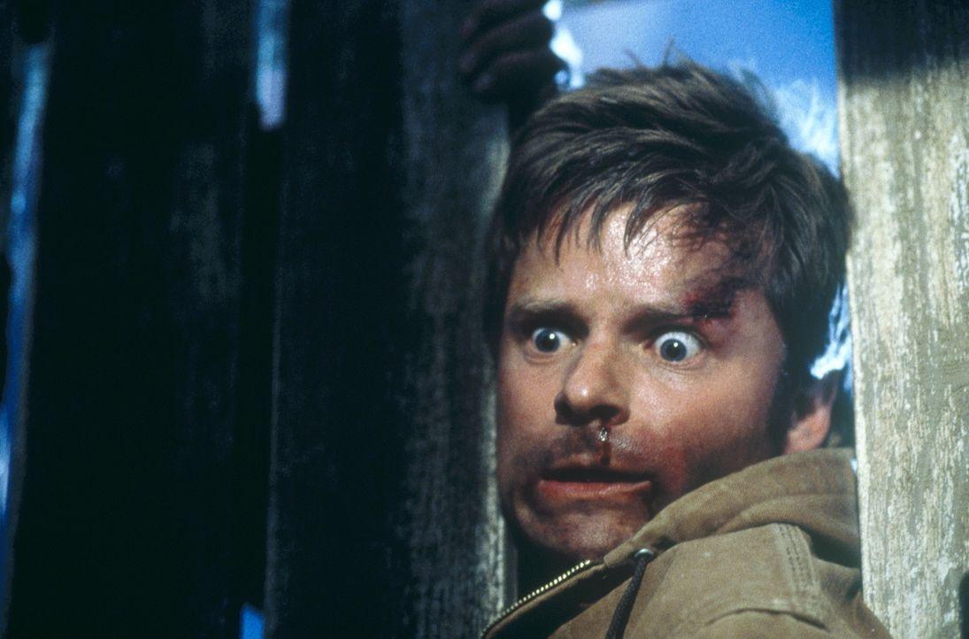 Im Visier des mörderischen Truckers Rusty Nail: Fuller (Steve Zahn) ... - Bildquelle: 20th Century Fox