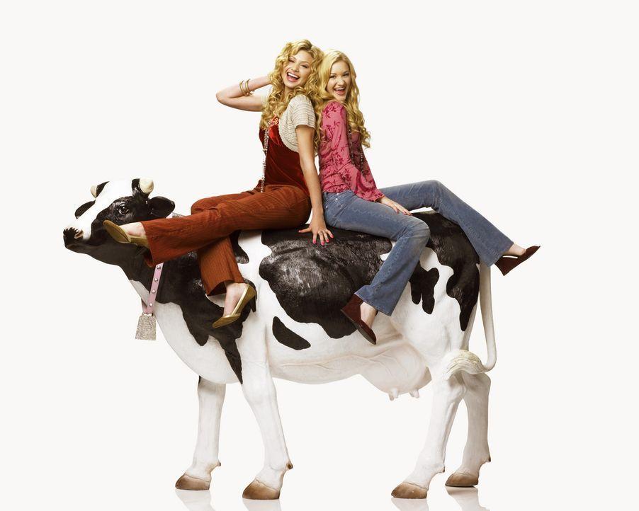 Partygirls auf Mission - Artwork (mit Alyson, l. und Amanda Michalka, r.) - Bildquelle: Buena Vista International Television