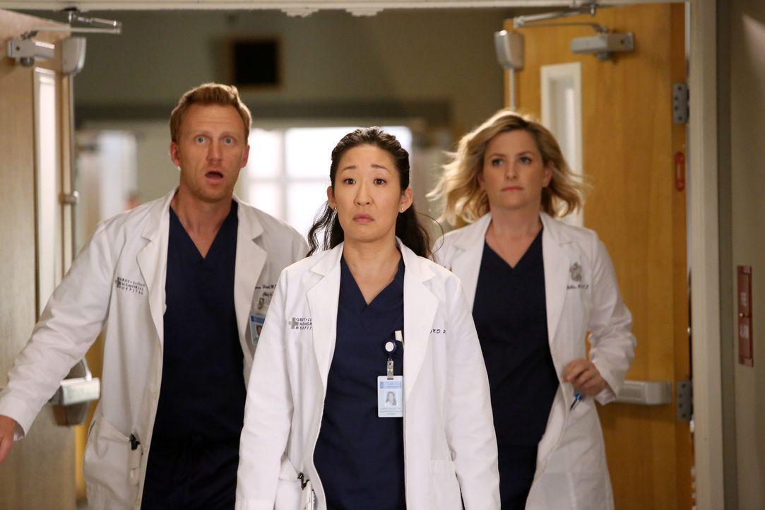 Während sich Owen (Kevin McKidd, l.) und Arizona (Jessica Capshaw, r.) für Cristina (Sandra Oh, M.) freuen, dass sie für den Harper Avery Award nomi... - Bildquelle: ABC Studios