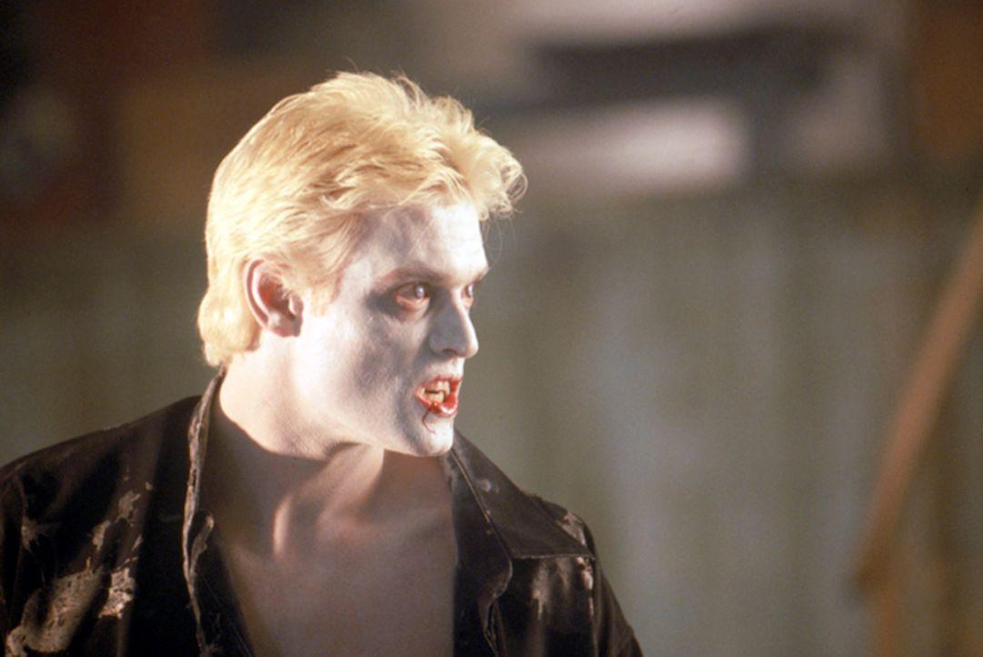 Nachdem er ein ausgiebiges Bad in einer Wanne voller Blut genommen hat, scheint Dracula (Stephen Billington) endlich wieder zu seinen ursprünglichen... - Bildquelle: Neo Art & Logic