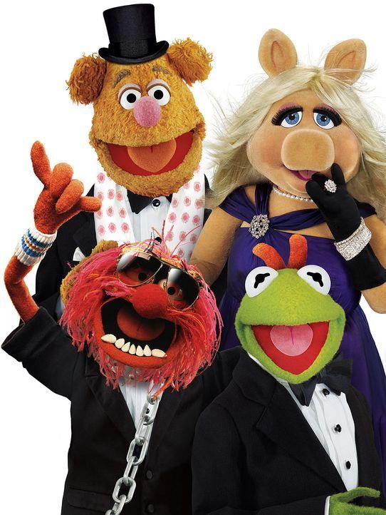 muppets-freisteller-10-disneyjpg 1425 x 1900 - Bildquelle: Disney