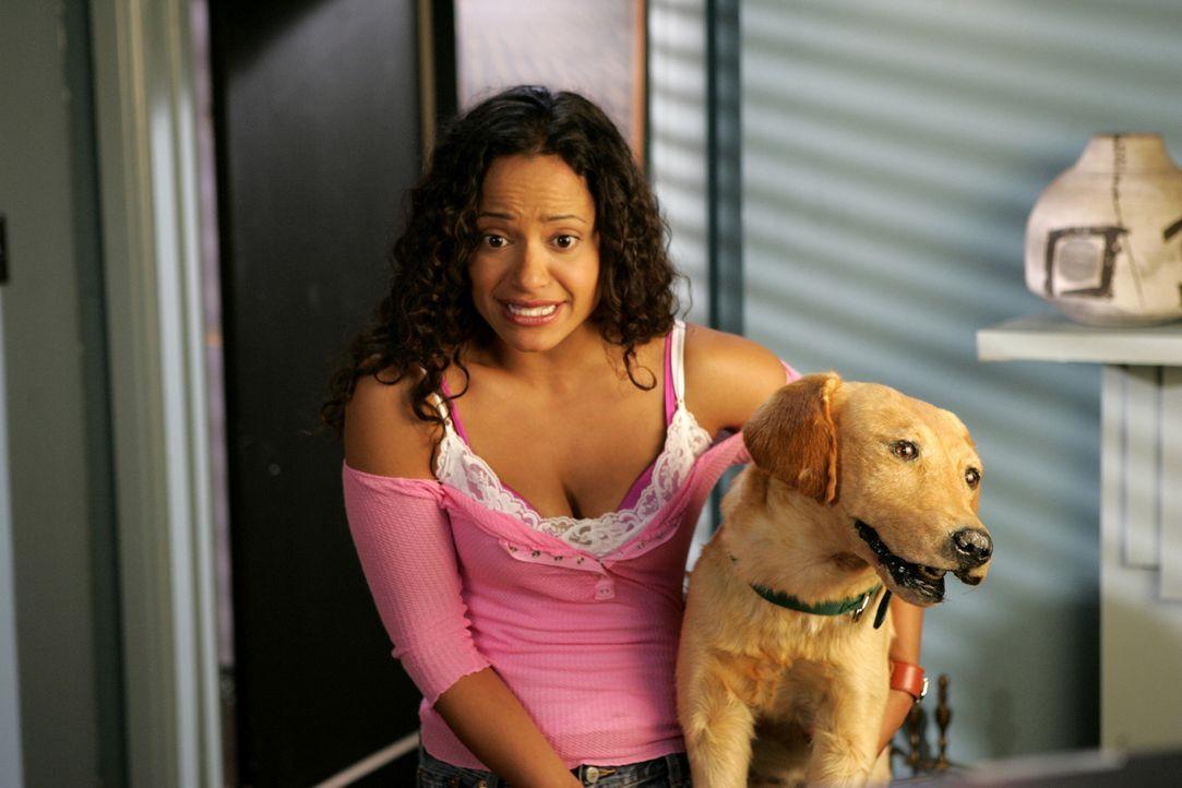 Etwas irritiert hält Carla (Judy Reyes) Rowdy im Arm ... - Bildquelle: Touchstone Television