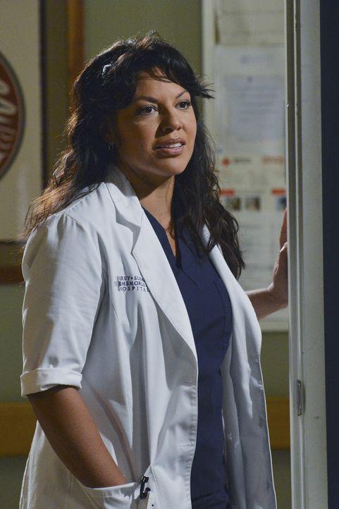 Nachdem Callie (Sara Ramirez) mit Sack und Pack ausgezogen ist, versucht Arizona verzweifelt, ihre Ehe noch zu retten. Eine Paartherapie soll helfen... - Bildquelle: ABC Studios