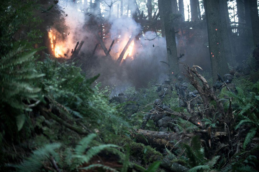 Planet der Affen: Survival - Bildquelle: Doane Gregory 2017 Twentieth Century Fox Film Corporation. All rights reserved. / Doane Gregory