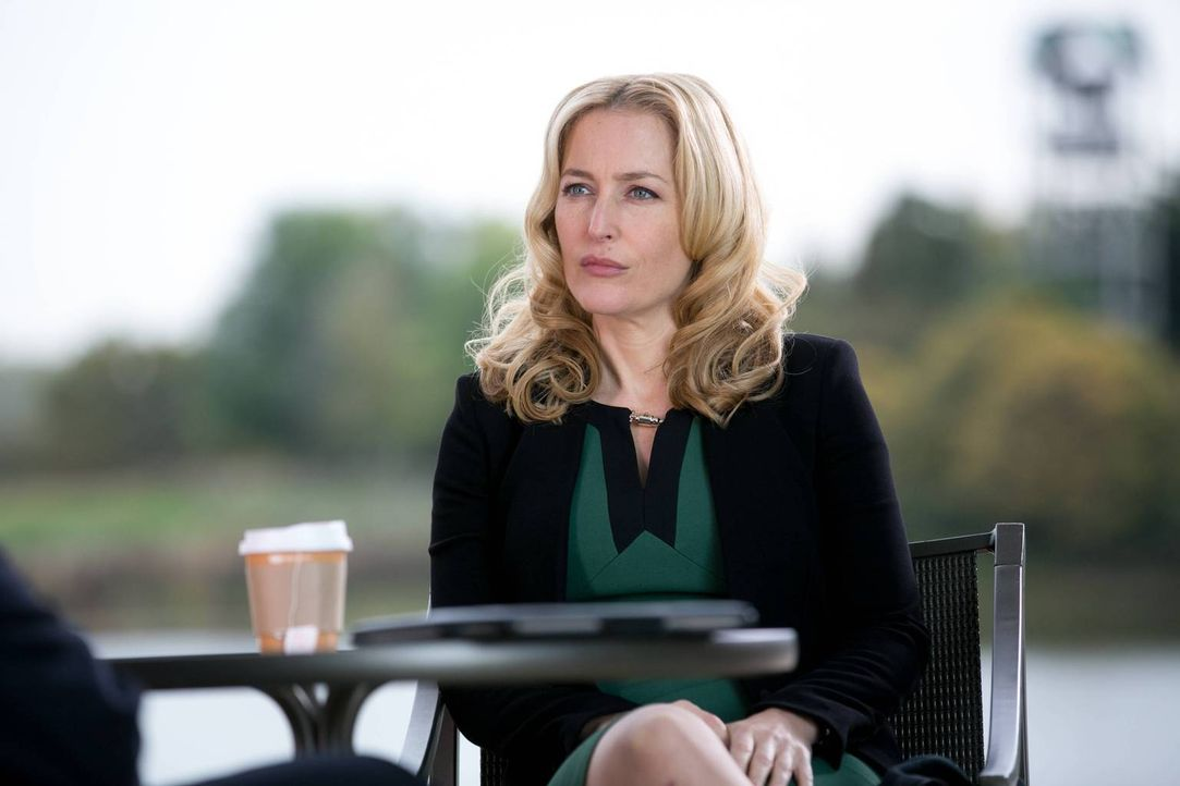 Was hat Meg Fitch (Gillian Anderson) vor - um ihre Tochter zu retten? - Bildquelle: 2013-2014 NBC Universal Media, LLC. All rights reserved.