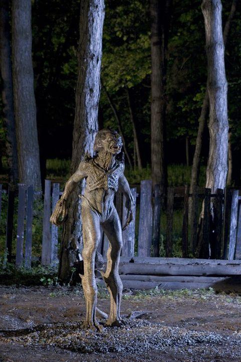 Ricky ahnt nicht, dass das Monster, das er gerufen hat, erst dann wieder verschwindet, wenn er bereit ist, dies mit seinem eigenen Leben zu bezahlen. - Bildquelle: 2006 Pueblo Film Distribution Limited. All Rights Reserved.