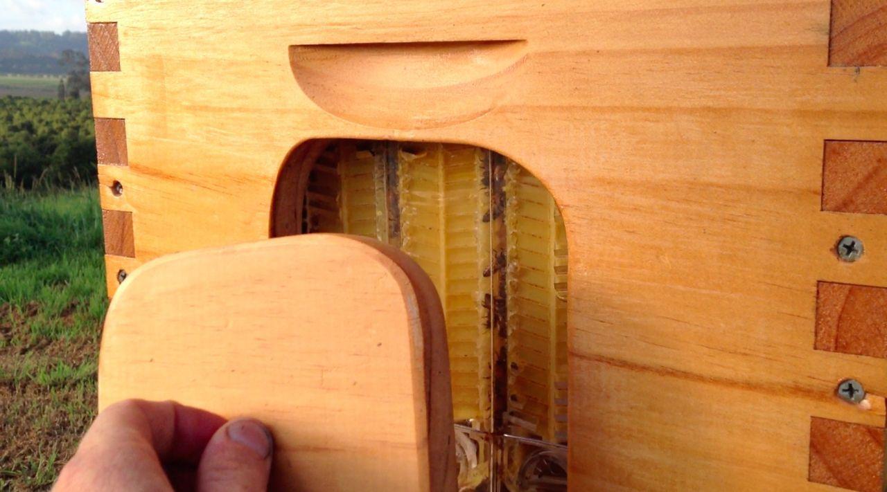 Die Imker Stuart und Cedar Anderson haben nach knapp 20 Jahren den ersten Zapfhahn entwickelt, aus dem der Honig fließt ... - Bildquelle: Honeyflow.com