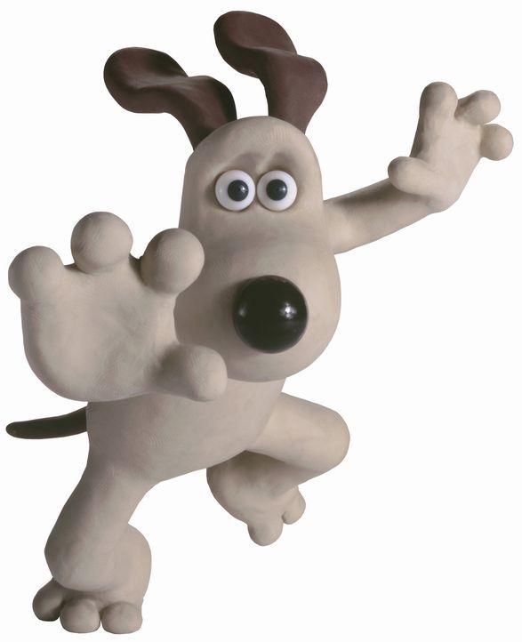 Eine Kaninchenplage droht den jährlichen Gemüsewettbewerb zu gefährden, doch die Karnickel haben ihre Rechnung ohne Gromit gemacht! - Bildquelle: Telepool GmbH
