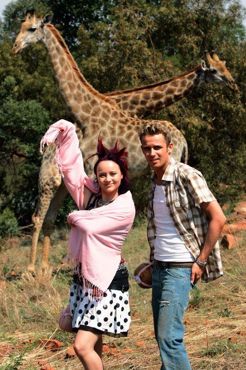 Ahnen nicht, dass sie sich schon bald in allergrößter Lebensgefahr befinden: Taffie (Monique van der Werff. r.) und Mike (Patrick Martens, r.) ...