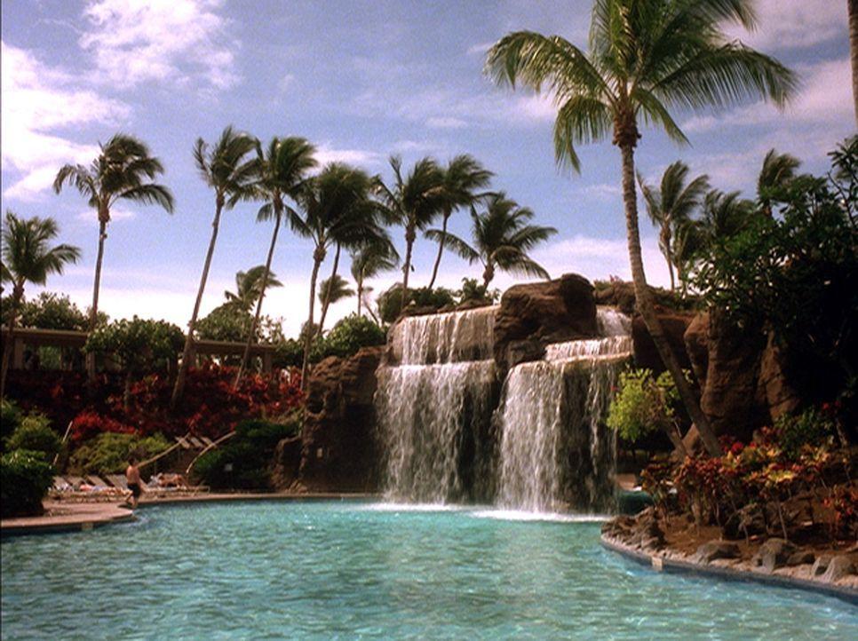 Hawaii wird Schauplatz einer schrecklichen Mordserie ... - Bildquelle: 2004 by Epsilon Motion Pictures