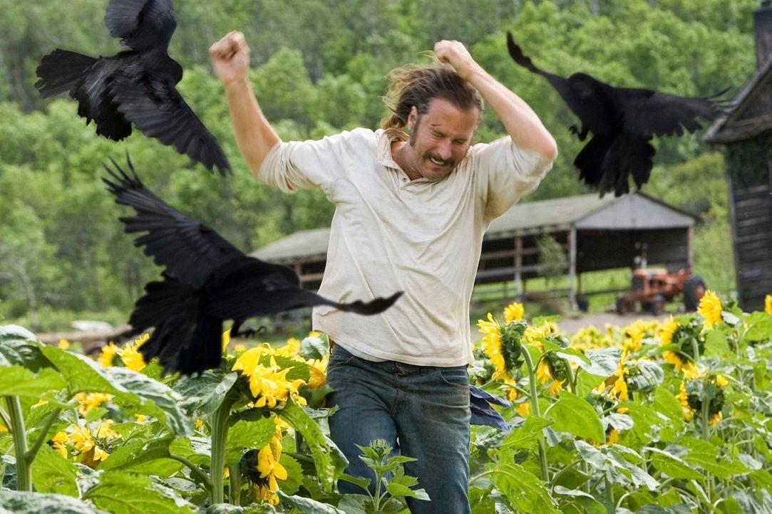 Als Burwell Rollins (John Corbett) von Krähen angegriffen wird, ahnt keiner, dass die Tiere durchaus Grund haben, ihm das Leben schwer zu machen ... - Bildquelle: 2005 GHP-3 SCARECROW, LLC.