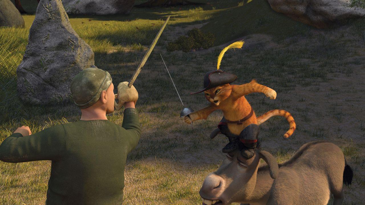 Shrek macht sich zusammen mit Esel Esel und dem Gestiefelten Kater auf den Weg, den zukünftigen König von Weit, Weit, Weg zu finden. Ein gefährli... - Bildquelle: TM &   2007 Dreamworks Animation LLC